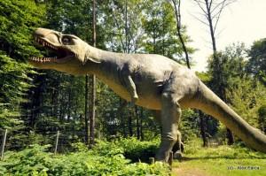 STYRASSIC PARK, AUSTRIA. Dinozauri pentru toate varstele.