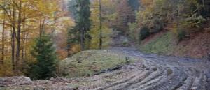 Panorama11Large