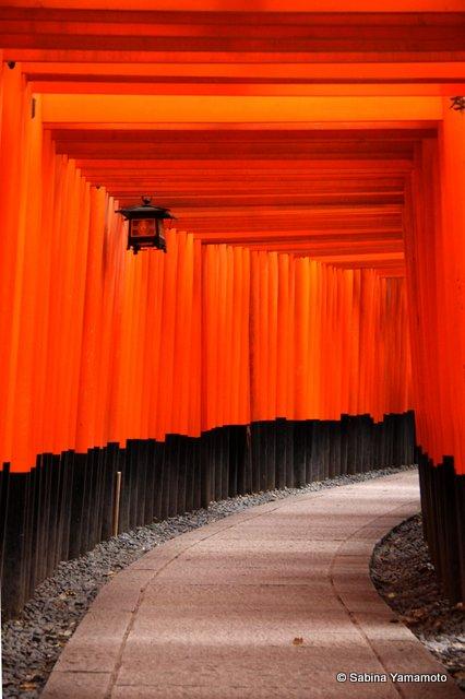 Fushimi Inari10