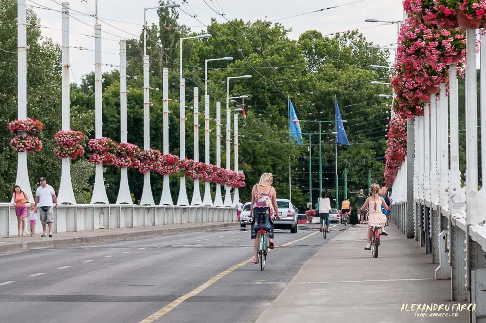 Szeged_0942