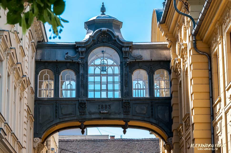 Szeged_1134