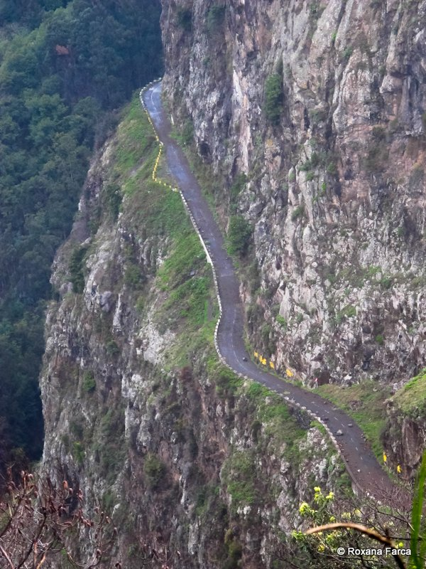 Madeira_2692