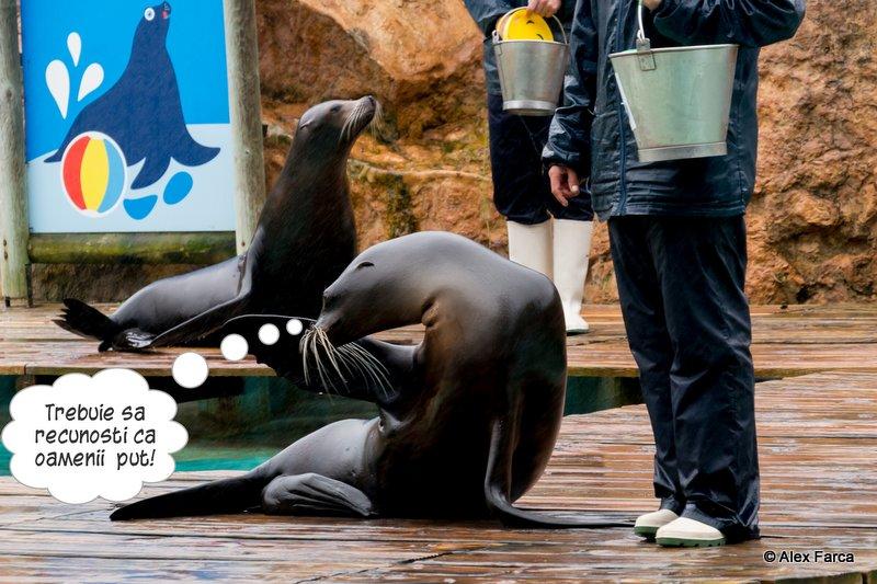 Lisabona_Zoo_0