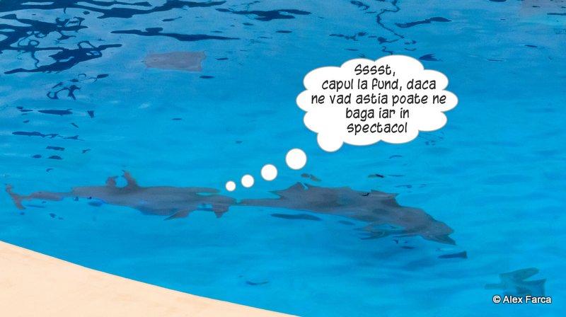 Lisabona_Zoo_01