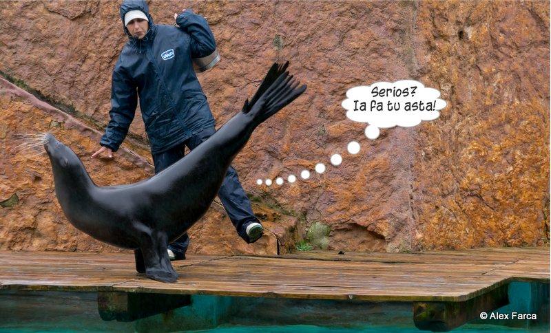 Lisabona_Zoo_09-001