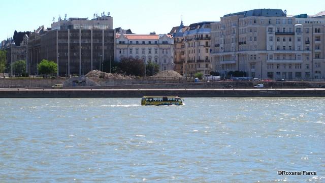 Cuminte un autobuz inota