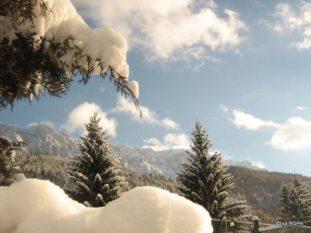 Iarna la Plaiul Foii