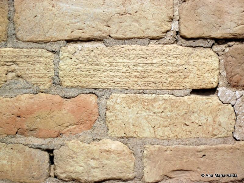 Detaliu zid
