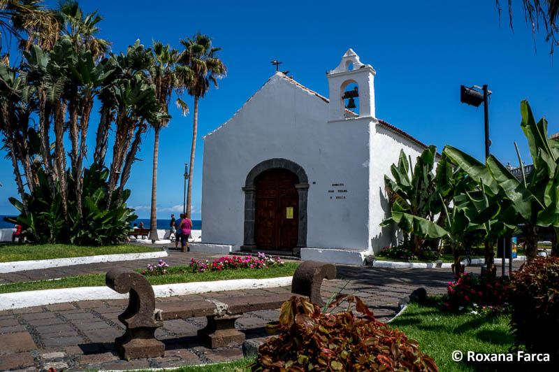 Puerto de la Cruz DSC02802