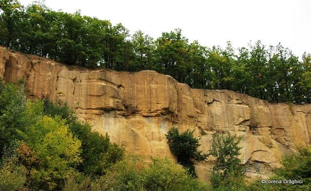 Gradina Zmeilor - perete de gresie