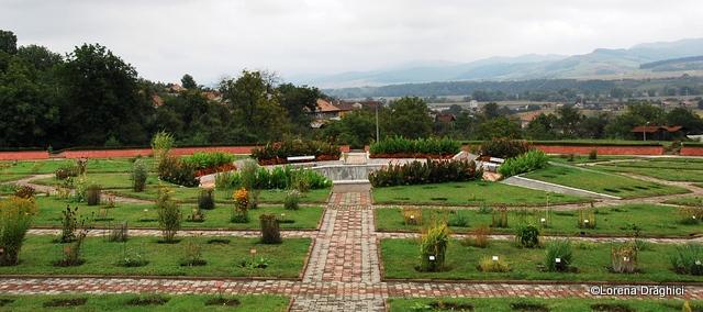 Gradina Botanica Jibou 9