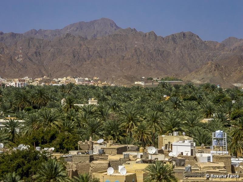 Oman_7909