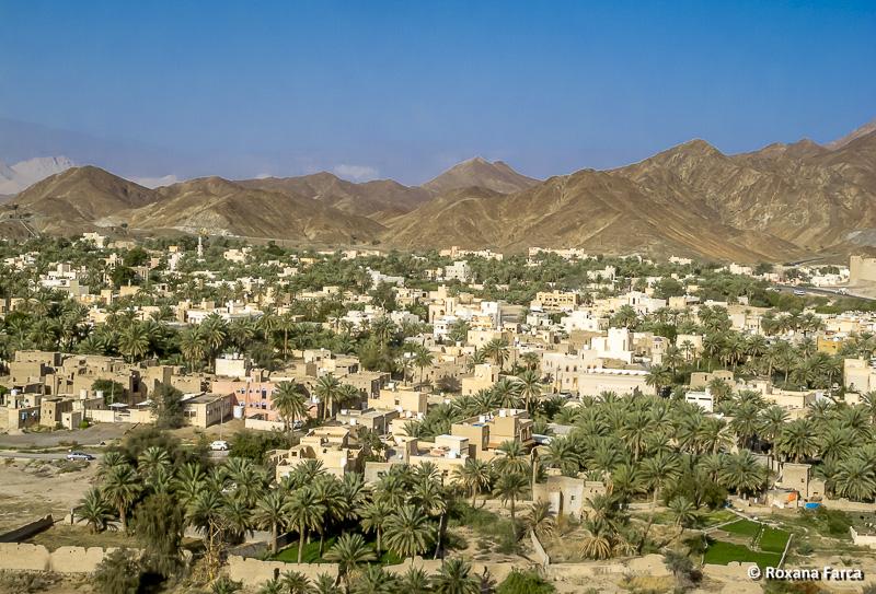 Oman_8033