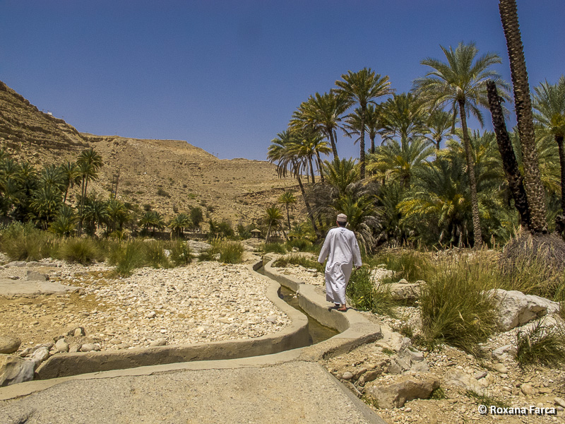 Oman_8281