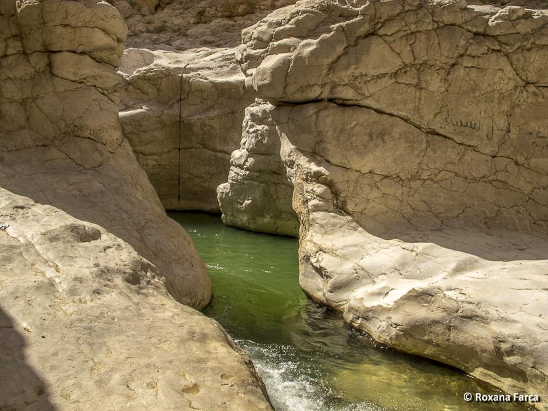 Oman_8332