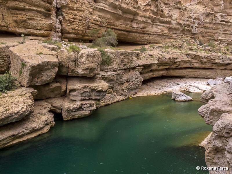 Oman_8527