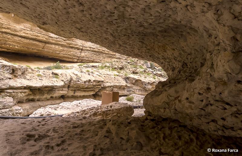 Oman_8535