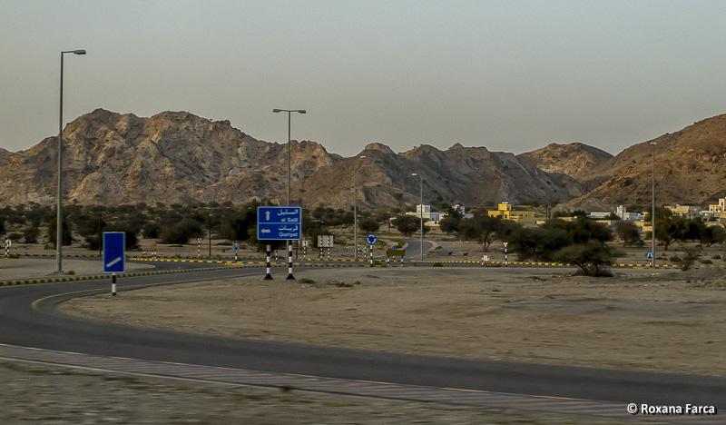 Oman_8553