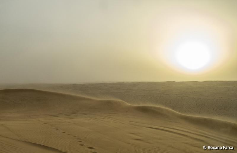 Oman_desert_8372