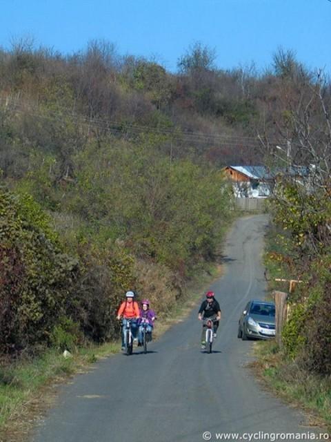 Urlati biciclete