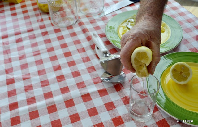 Limonada neindulcita. Surprinzator de buna