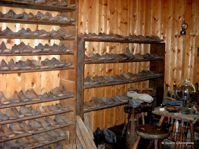 Muzeul Satului Austriac DSCN6035