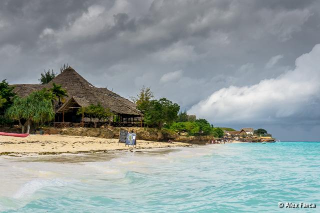Zanzibar_00878