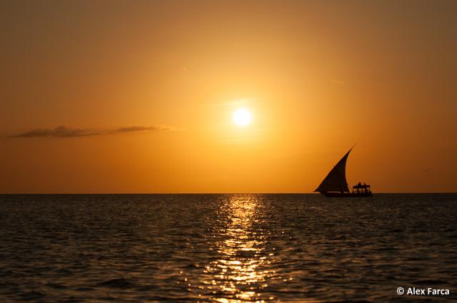 Zanzibar_6552