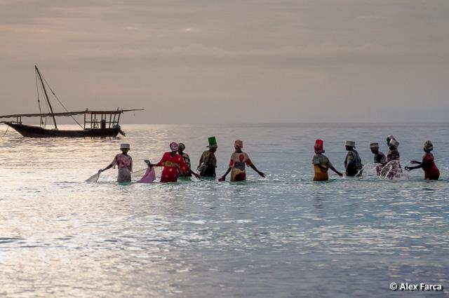 Zanzibar_7757