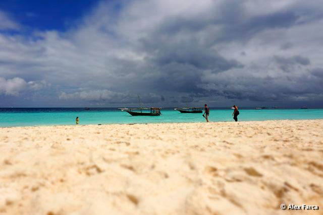 Zanzibar00881