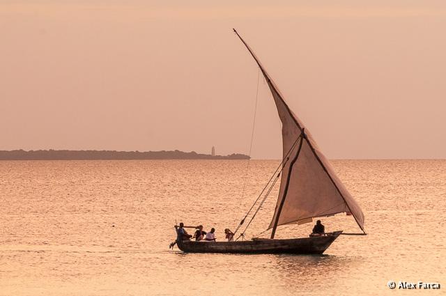 Zanzibar_6144-2