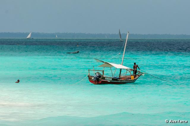 Zanzibar_6213