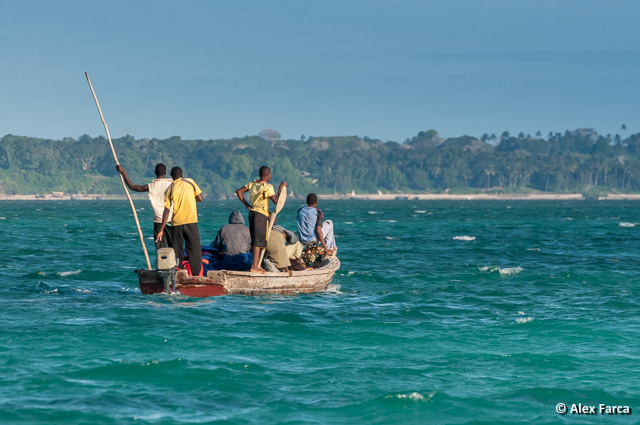 Zanzibar_6293