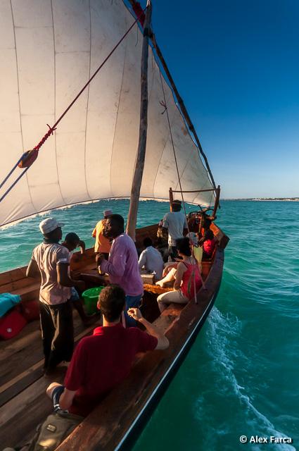 Zanzibar_6457