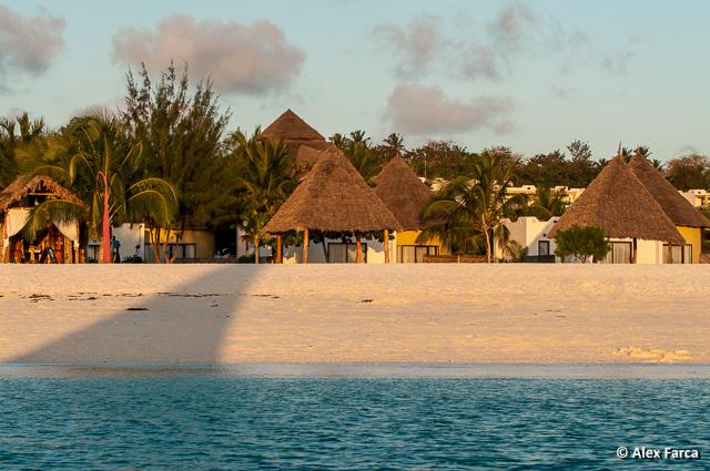 Zanzibar_6519