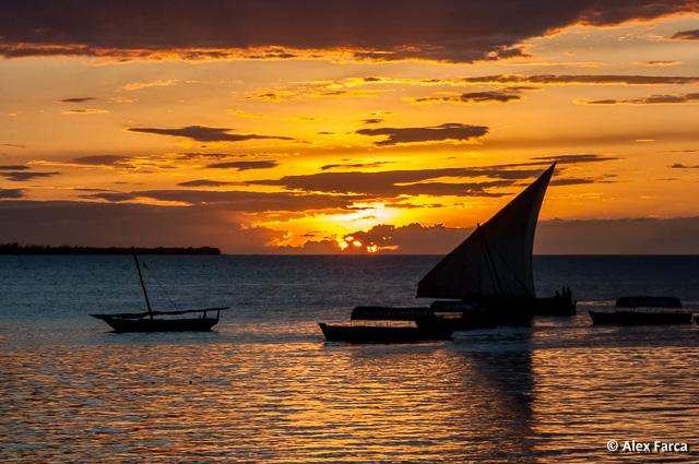 Zanzibar_7365