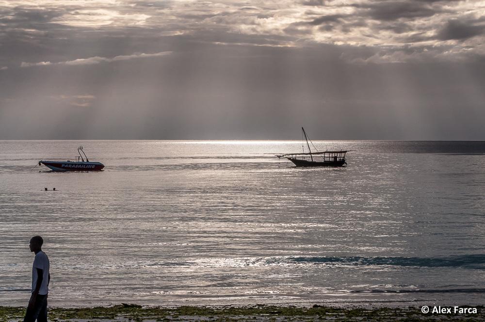 Zanzibar_7485