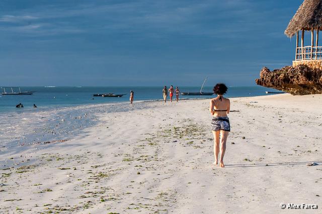 Zanzibar_7558