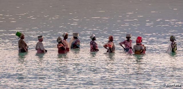 Femei din Zanzibar pescuind