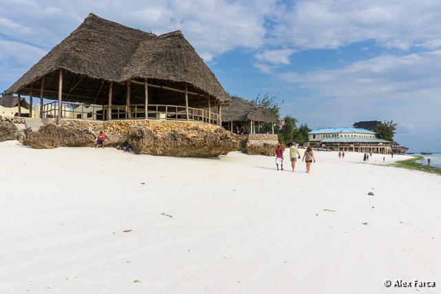 Zanzibar_S00350