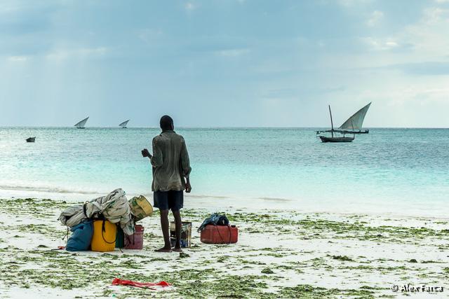 Zanzibar_S00360-2