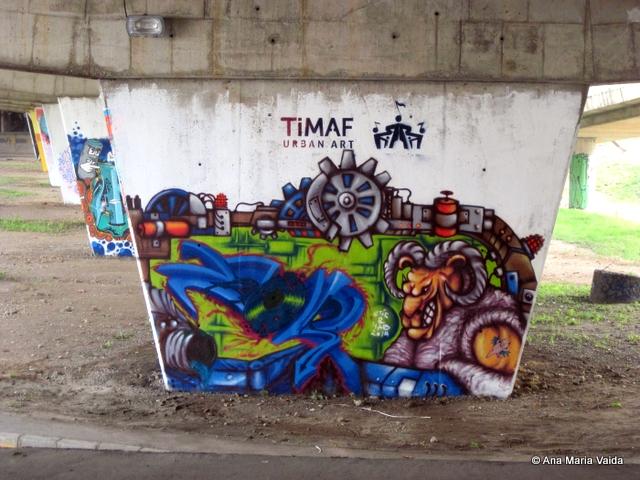 Street art Cluj_4467