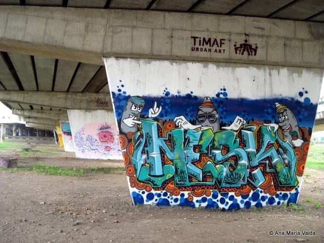 Street art Cluj_4470