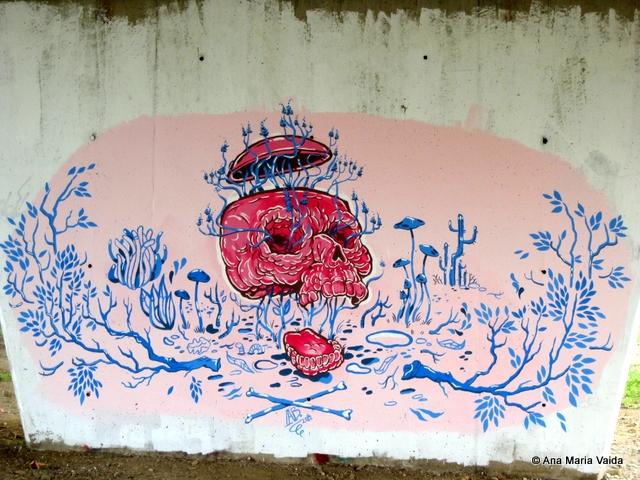 Street art Cluj_4473