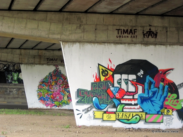 Street art Cluj_4475