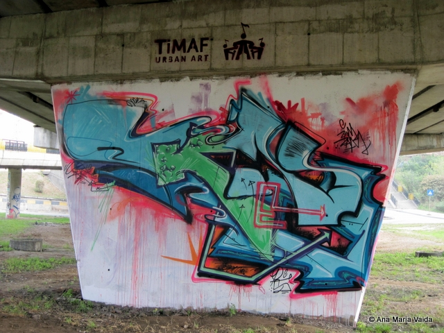Street art Cluj_4476