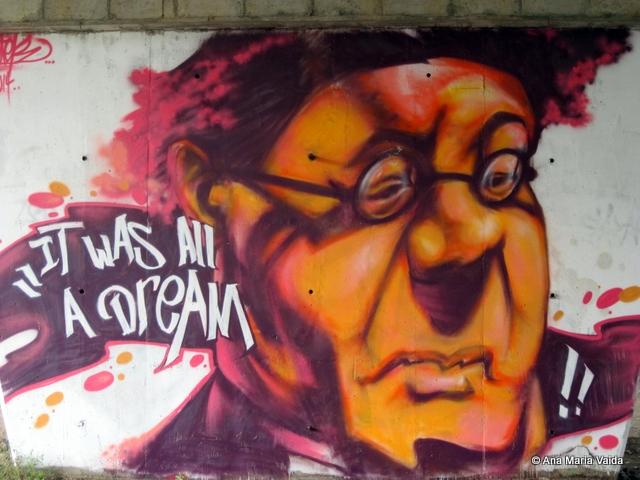 Street art Cluj_4494