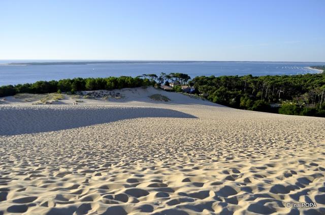 Padure, ocean si nisip