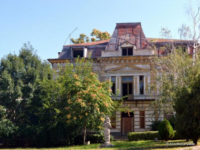 Casa Fantaneanu
