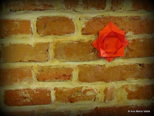 Cluj Capitala Europeana a Tineretului origami 1